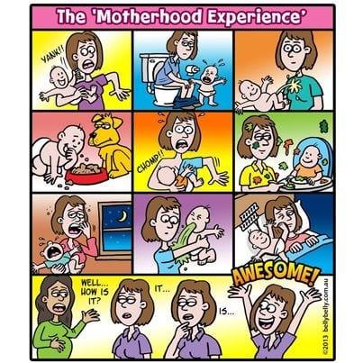 The Motherhood Experience