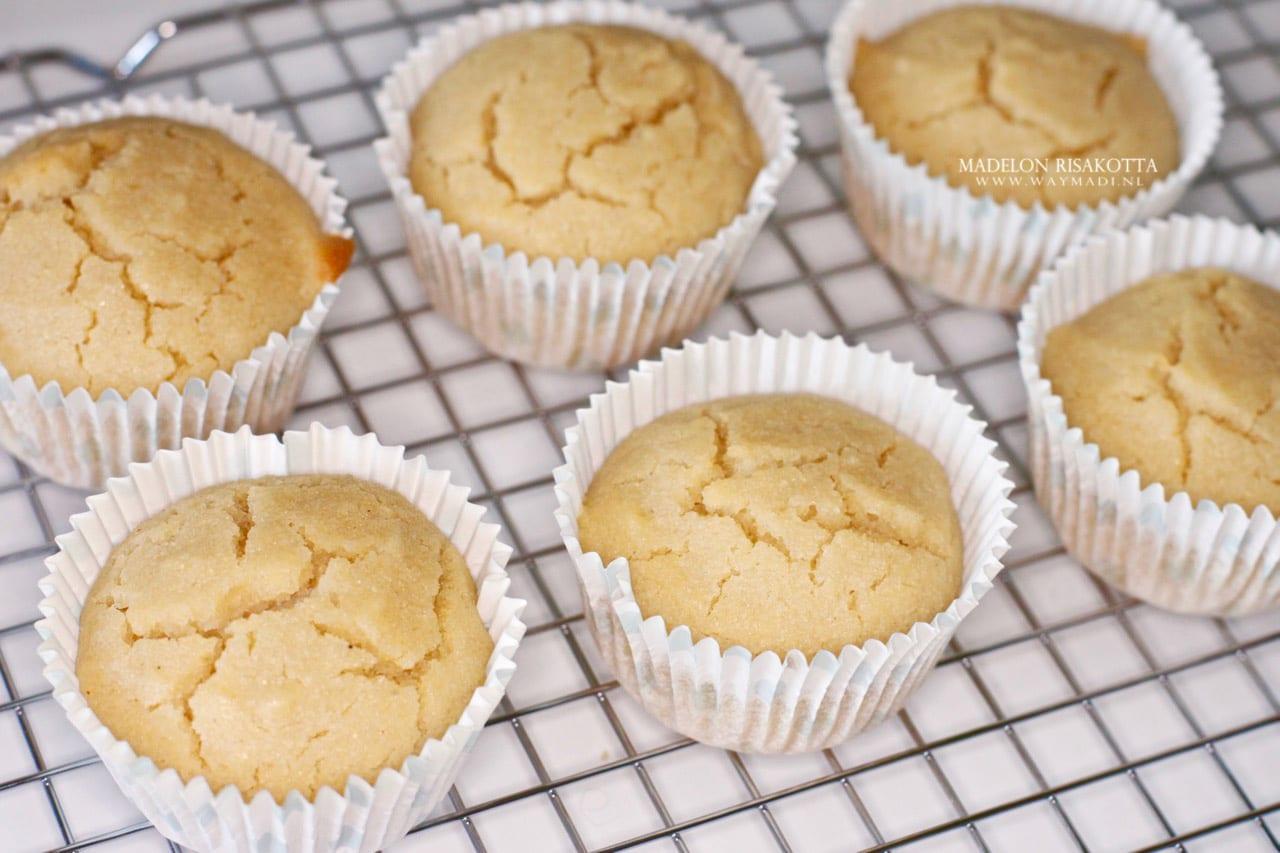 Glutenvrij | Zoete Maismuffins