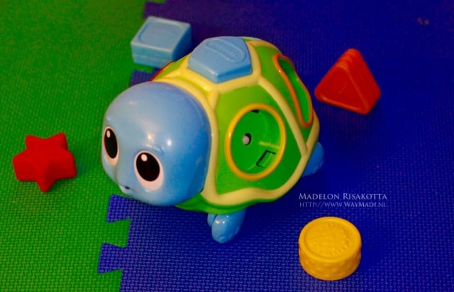 Crawl 'n Pop Turtle